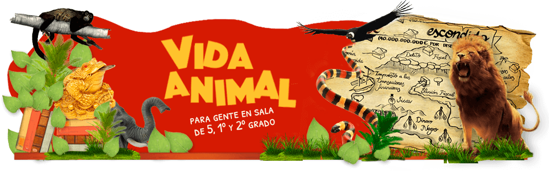 Animaciones_vidaanimal3